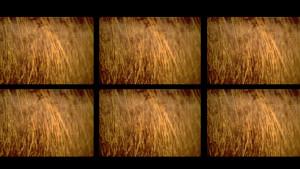 tom-scott-st-marys-postcard-view-6-screen-image